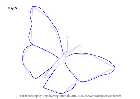 Learn How To Draw A Monarch Butterfly (butterflies) Step