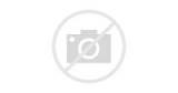 magasin animaux paris 13