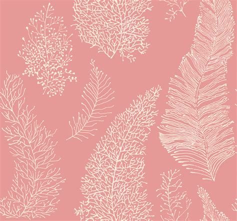 wallpaper coral color gallery