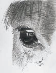 Horse Eye Drawing