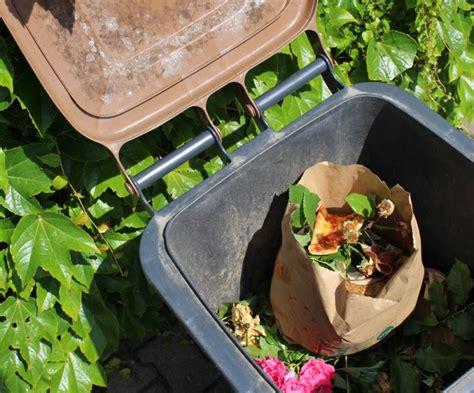 Was Tun Bei Maden In Der Biotonne by Was Hilft Gegen Maden In Der Biotonne Waschpulver Gegen