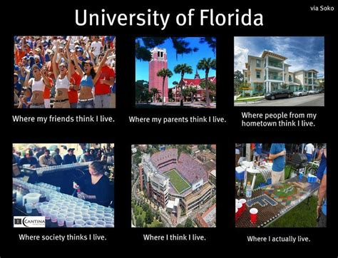 Funny Florida Gator Memes - 1000 images about go gators on pinterest