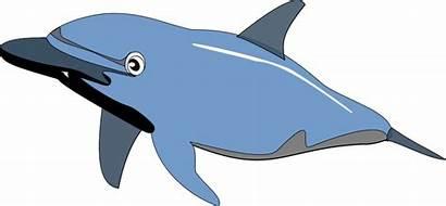Clipart Sea Ocean Animals Clip Transparent Dolphin