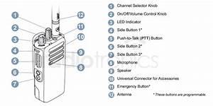 Motorola Dp4600 Digital Two Way Radio
