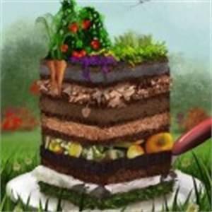 Tröpfchenbewässerung Selber Bauen : der lasagne garten einfach ertragreich garten pflanzen ~ Lizthompson.info Haus und Dekorationen