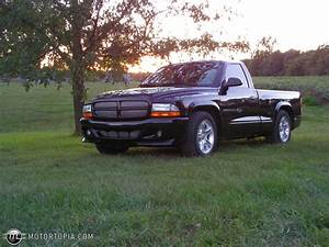 2001 Ford Ranger  R   U2013 Pictures  Information And Specs
