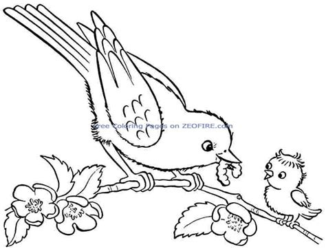quotes with birds for preschoolers quotesgram 169 | 614695421 295 animal birds coloring pages printable