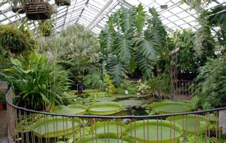Botanischer Garten Garden Tickets by Leipzig Botanical Garden Leipzig Reviews Ticket Price