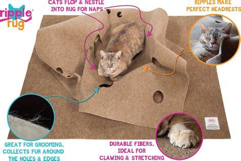 cat play mat cat play rug rugs ideas