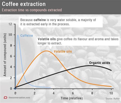 So, let's take a look at the importance of brew ratio to making great coffee. 4 Things Needed To Make The Perfect Cup Of Coffee | Science 2.0