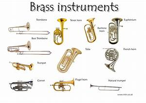 Musical Instruments: The Brass Family – The Culture Project