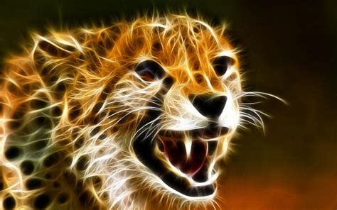Cool Wallpapers Of Animals - wallpapers of cheetah wallpaper cave