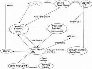 File Sulfur Cycle Jpg