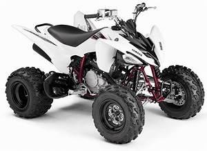 Quad Yamaha 250 : los 8 mejores cuatris de yamaha y las 3 mejores motos taringa ~ Medecine-chirurgie-esthetiques.com Avis de Voitures