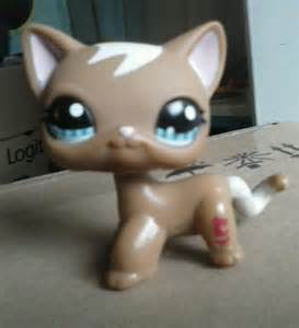 Rare LPs Ranch Cat