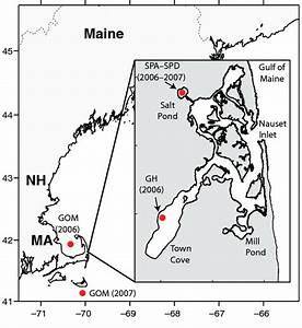 Map Of The Nauset Marsh System And The Gulf Of Maine