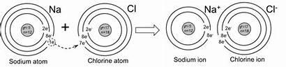 Sodium Chloride Example Ionic Bond Chlorine Atom