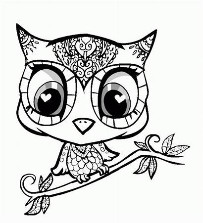 Coloring Pages Animal Teens