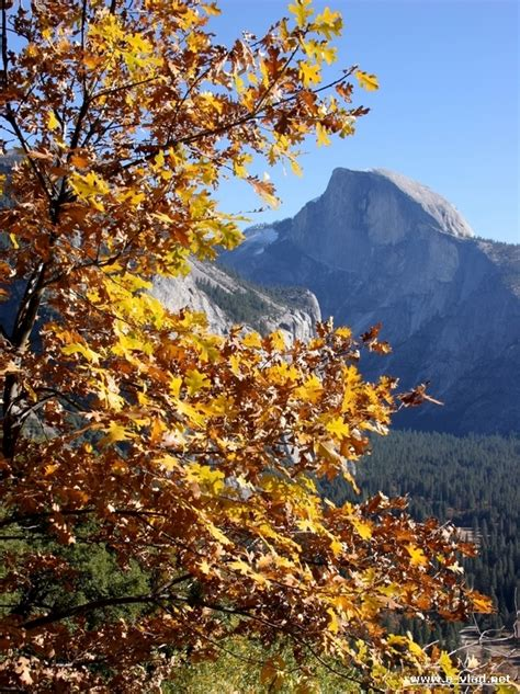Yosemite National Park Travel Pictures First