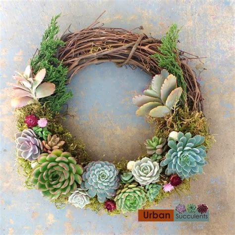 succulent wreaths for sale christmas succulent wreath urban succulents