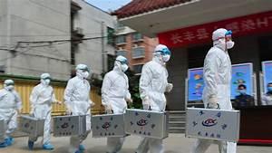 A Scarier Bird Flu  Cdc Chief Warns Of Looming H7n9 Threat