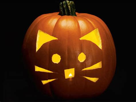 cat themed jack  lantern ideas     kids