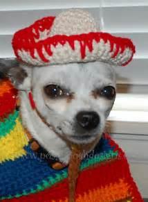 ravelry dog sombrero  poncho set pattern  sara sach