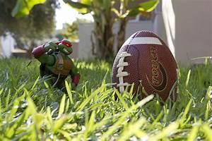 Raphael American Football Nfl