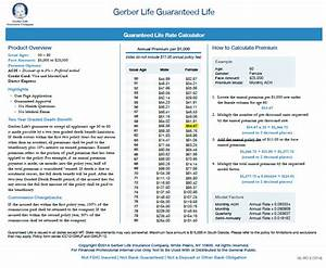 Fidelity Guaranty Life Gerber Life Insurance Your Insurance Group Agents