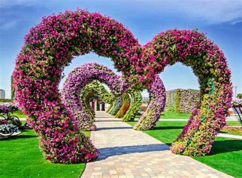 Garden Decoration Dubai by Excepcional Dubai Miracle Garden En Dubai El Jard 237 N