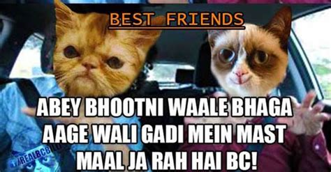 Bc Memes - these funniest bc billi bakchod billi memes will truly make your day in the most amazing way