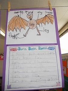 48 Best Images About Bat Crafts  U0026 Activities For Kids On Pinterest