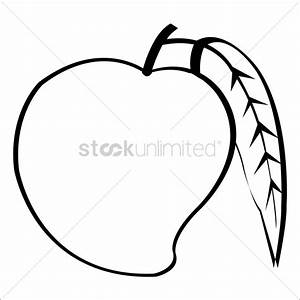 Mango Vector Image - 1414027 | StockUnlimited