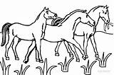 Coloring Horse Pages Horseland Horses Printable Cool2bkids Drawing Cartoon Trojan Funny Christmas Pdf Getcolorings Clipartmag Visit sketch template