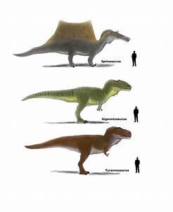 images of giganotosaurus vs allosaurus golfclub