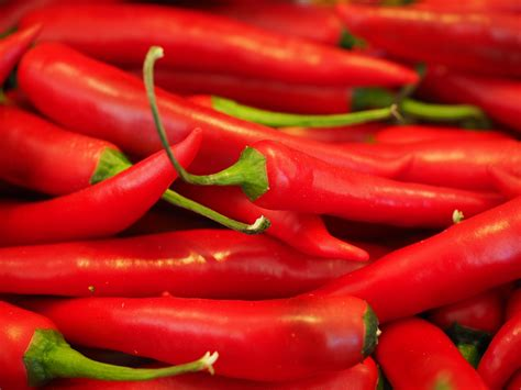 gambar tajam menanam makanan membumbui merah