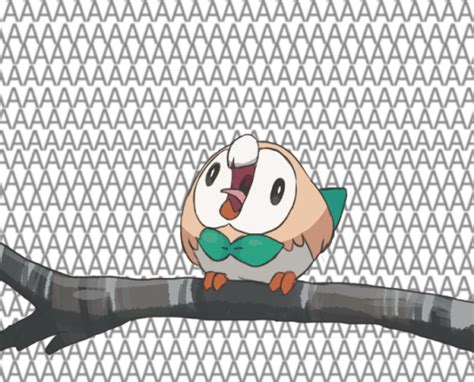 Rowlet Memes - rowlet screams rowlet s roundness know your meme