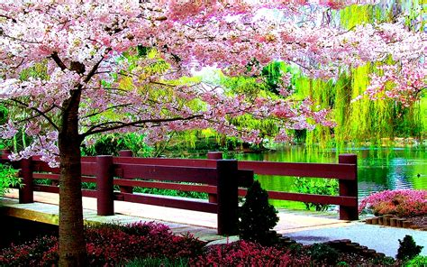 Free Desktop Wallpaper Spring Scenes Wallpapersafari