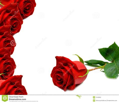 wooden roses background stock photography image 7243652