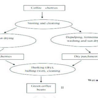 For coffee enthusiasts who want to brew a better cup of java at home, this is a quick guide of 6 popular manual brewing methods to consider to achieve there is a wide acceptance that manual brewing methods allow for better quality control and a superior coffee experience. (PDF) DYNAMICS OF BACTERIAL COMMUNITIES ASSOCIATED TO CAMEROONIAN COFFEE POSTHARVEST PROCESSING ...