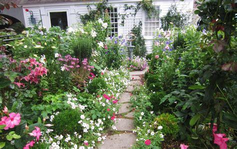 Simple Arrangements Of Cottage Garden Plants Margarite
