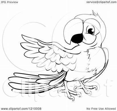 Macaw Parrot Clipart Cartoon Presenting Vector Royalty