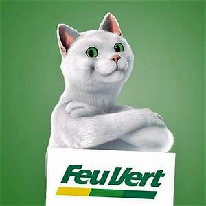 Feu Vert Controle Technique : un chat d couver lors d 39 un contr le technique actualit auto forum auto plus ~ Medecine-chirurgie-esthetiques.com Avis de Voitures