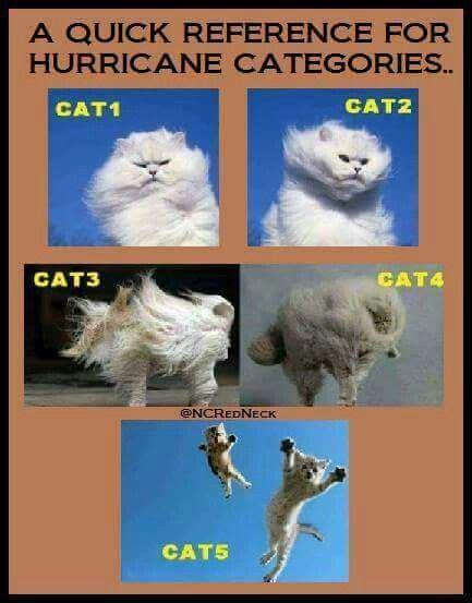 Meme Categories - hurricane matthew update cat4 storm targets fl east coast the last refuge