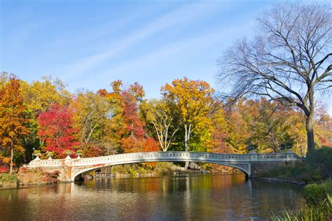 Central Park NYC | Our Guide & 10 Favourite Spots to Explore