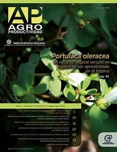 Animal En G : pdf calabaza chihua cucurbita argyrosperma huber ~ Melissatoandfro.com Idées de Décoration