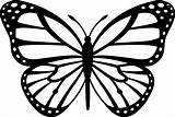 Coloring Butterfly Monarch Pdf sketch template
