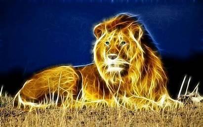 Lion Wallpapers Fractal 3d Desktop Animal Nice