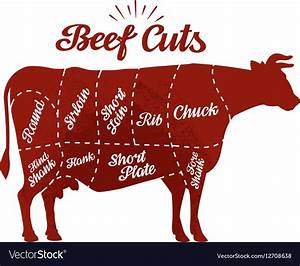 Butcher Shop Beef Cuts Royalty Free Vector Image