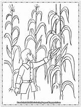 Corn Coloring Printable Pages Field Sheets Sheet Harvesting Indian Colouring Harvest Cob Cartoon Children Preschool Thanksgiving Books Lovely Fruit sketch template